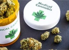 Potential market for medicinal cannabis: 1 million adults